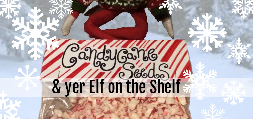 Elf On The Shelf with Candy Cane Seeds